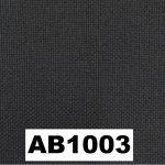 AB1003