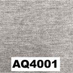 AQ4001
