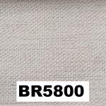 BR5800
