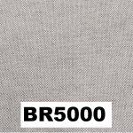BR5000