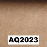 AQ2023